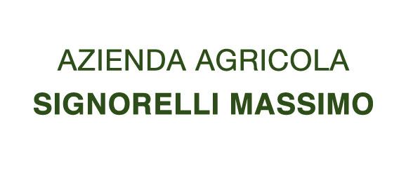 Signorelli Massimo
